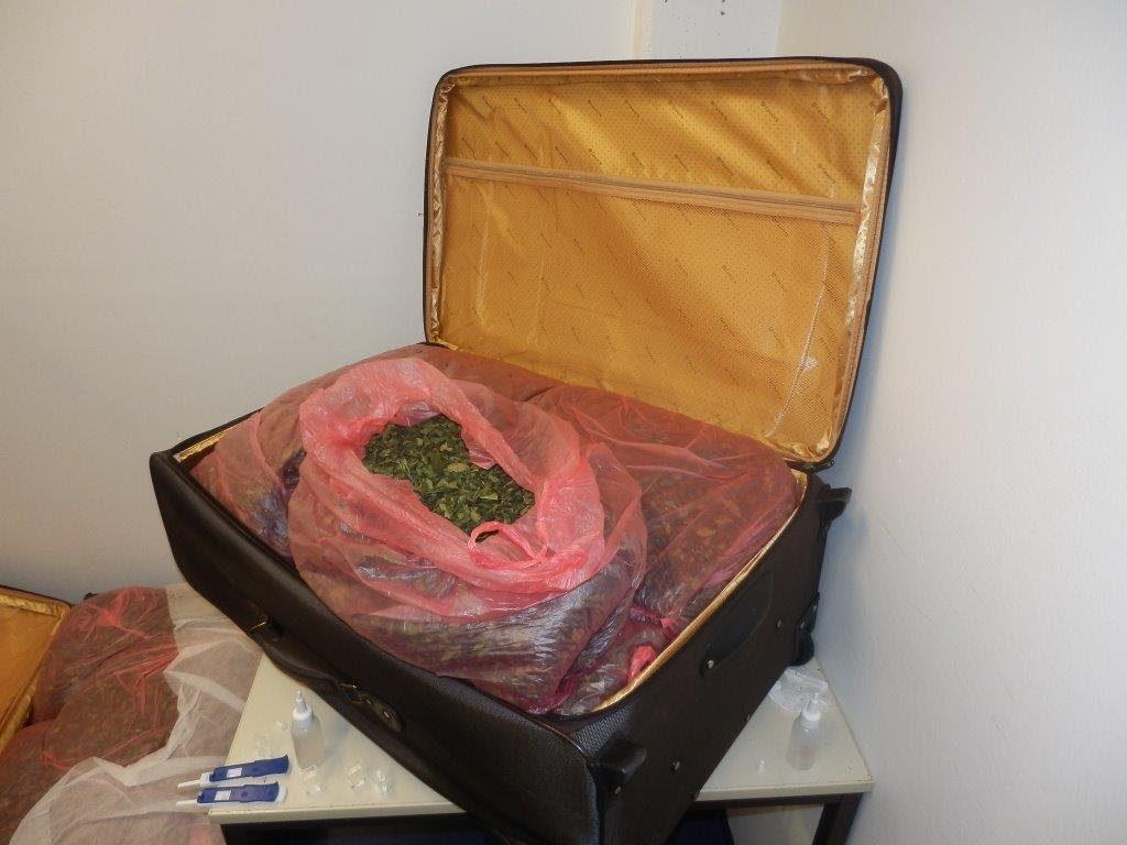 Mit zwei Koffern voll mit der Droge Kath ist ein Reisender am Flughafen München festgenommen worden Quelle Foto : Bundespolizei
