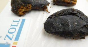 Schlangenköpfe vom Zoll in Paket entdeckt Quelle Foto Zoll Garching